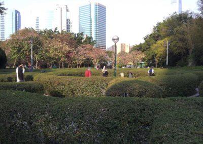Kowloon Park 06